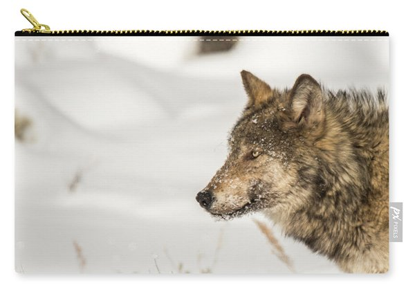 Carry-all Pouch featuring the photograph W37 by Joshua Able's Wildlife