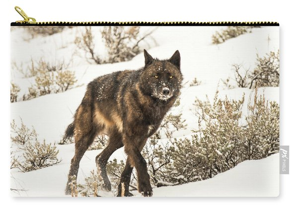 Carry-all Pouch featuring the photograph W38 by Joshua Able's Wildlife