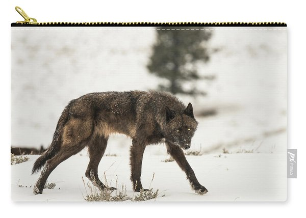 Carry-all Pouch featuring the photograph W42 by Joshua Able's Wildlife