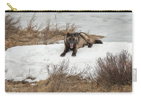 Carry-all Pouch featuring the photograph W57 by Joshua Able's Wildlife