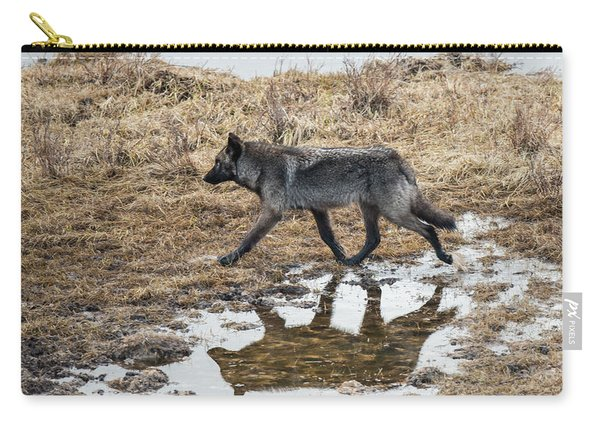 Carry-all Pouch featuring the photograph W60 by Joshua Able's Wildlife