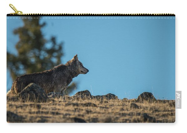Carry-all Pouch featuring the photograph W61 by Joshua Able's Wildlife