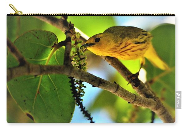 Warbler's Delight Carry-all Pouch
