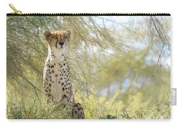 Watchful Eyes Carry-all Pouch