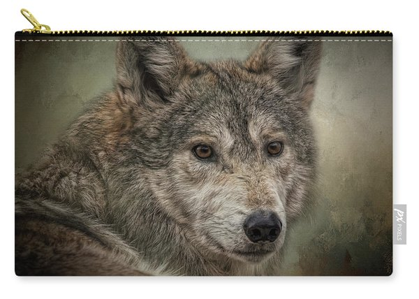 Watchful Carry-all Pouch