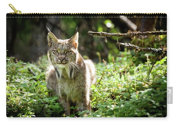 Carry-all Pouch featuring the photograph Watchful Mama Lynx by Tim Newton