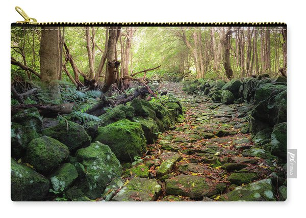 Waterfall Path Carry-all Pouch