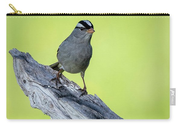 White Crowned Sparrow 1 Carry-all Pouch
