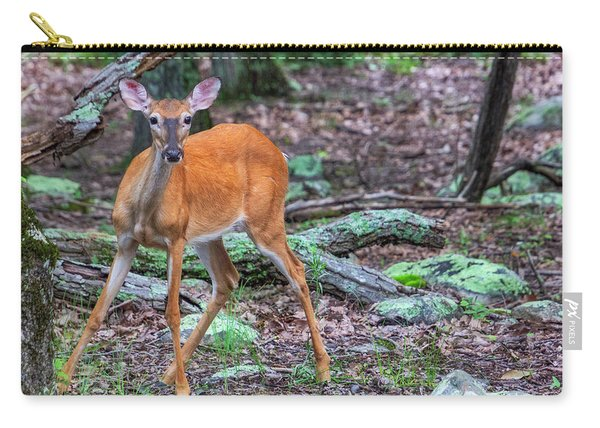White Tail Deer Carry-all Pouch