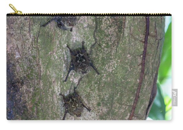 Whited Lined Bat Costa Rica Carry-all Pouch