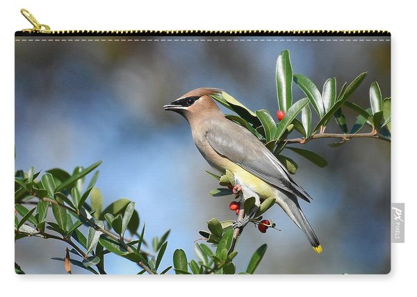 Winged Beauty Carry-all Pouch
