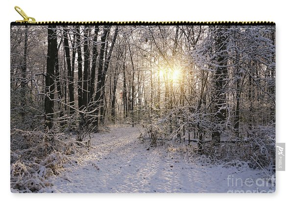Winter Woods Sunlight Carry-all Pouch
