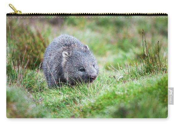 Carry-all Pouch featuring the photograph Wombat Outside During The Day. by Rob D Imagery