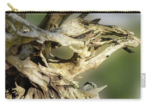 Carry-all Pouch featuring the photograph Wood Log In Nature No.14 by Juan Contreras
