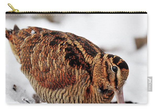 Woodcock Probing For Prey In Marsh, Berwickshire, Scotland Carry-all Pouch