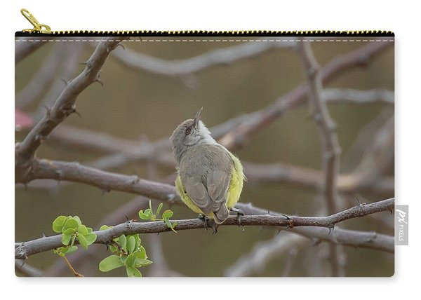 Yellow-bellied Eremomela Carry-all Pouch