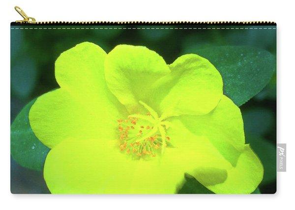 Yellow Hypericum - St Johns Wort Carry-all Pouch