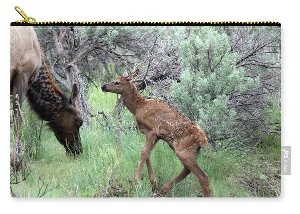 Carry-all Pouch featuring the photograph Yellowstone Elk Calf And Cow by Jean Clark