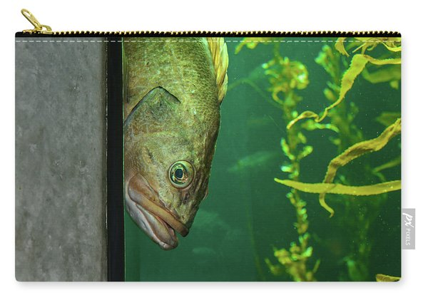 Yellowtail Rockfish Playing Peekaboo Carry-all Pouch