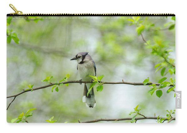 Young Jay Thinking Carry-all Pouch