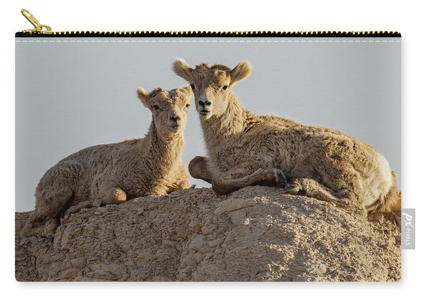 Young Mountain Sheep In Badlands National Park Carry-all Pouch