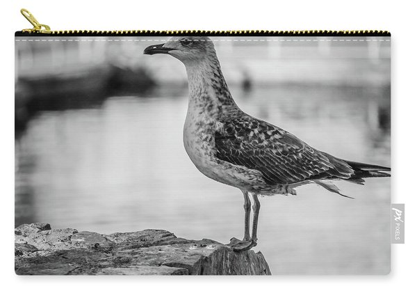 Young Seagull Carry-all Pouch