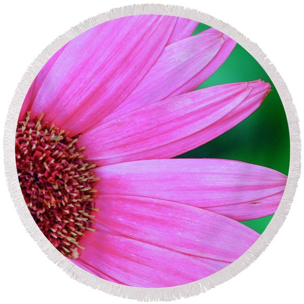 Pink Gerbera Flower Round Beach Towel