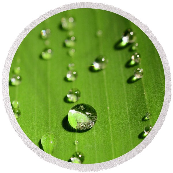Water Drop On Green Leaf Round Beach Towel