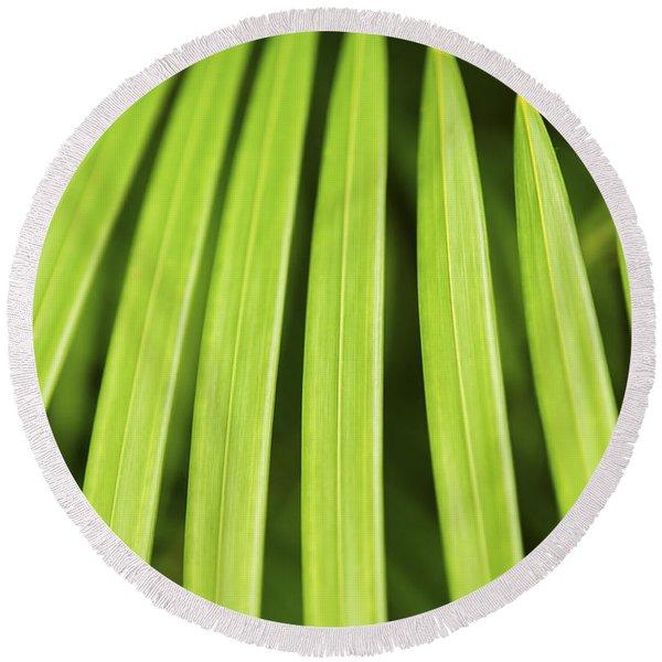 Palm Tree Leaf Round Beach Towel