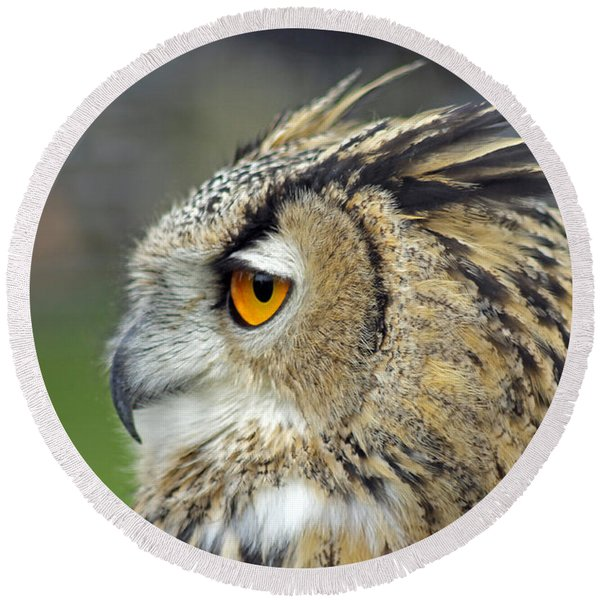European Eagle Owl Round Beach Towel