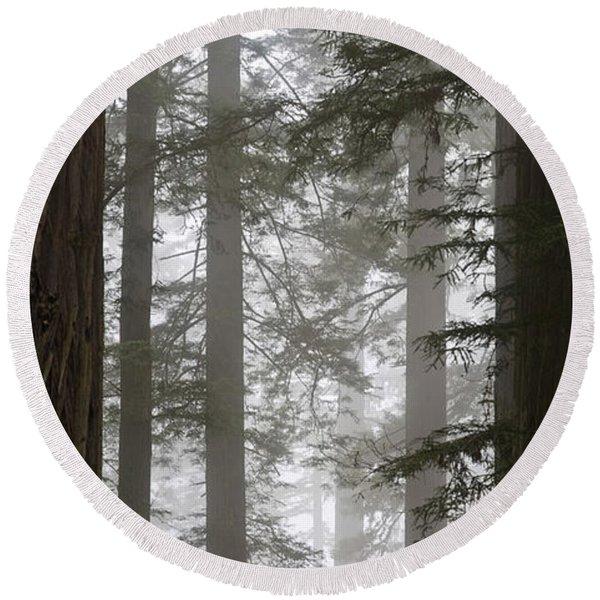 Foggy Coast Redwood Forest Round Beach Towel