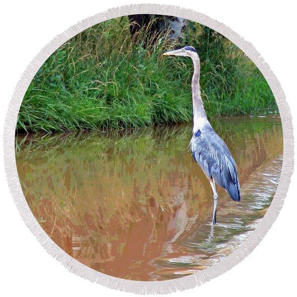 Blue Heron On The East Verde River Round Beach Towel