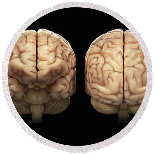 The Human Brain Round Beach Towel