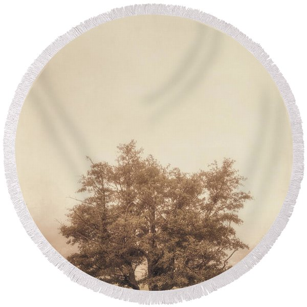 A Tree In The Fog Round Beach Towel