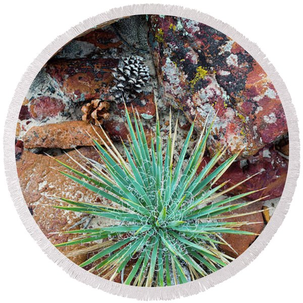 Agave And Lichened Rocks, Grand Round Beach Towel