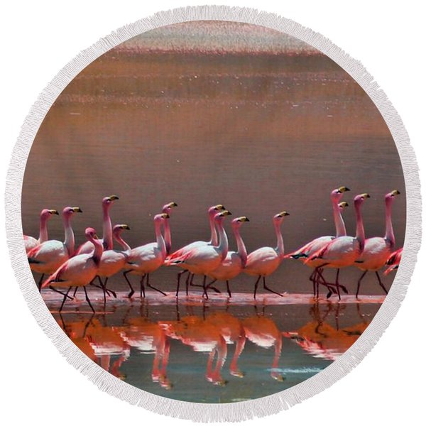 Andean Flamingoes Round Beach Towel