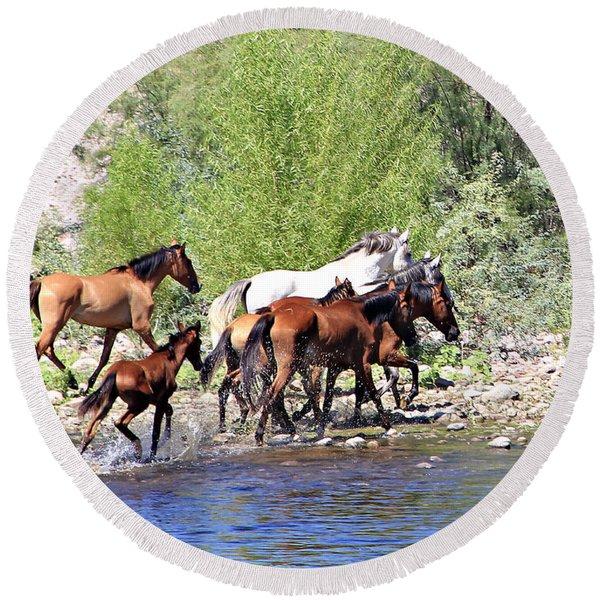 Arizona Wild Horse Family Round Beach Towel