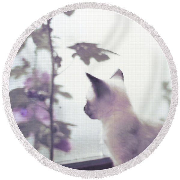 Baby Siamese Kitten Round Beach Towel