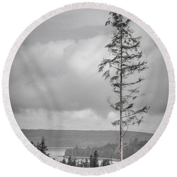 Tall Tree View Round Beach Towel