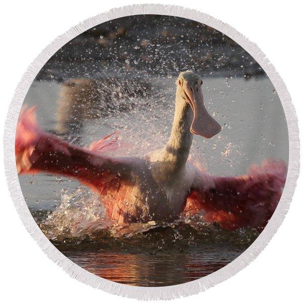 Bath Time - Roseate Spoonbill Round Beach Towel
