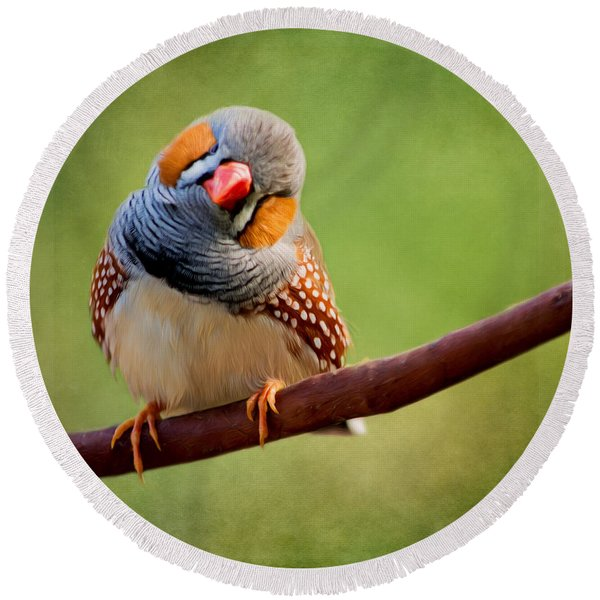 Bird Art - Change Your Opinions Round Beach Towel