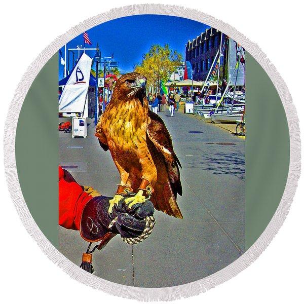 Bird Of Prey At Boat Show 2013 Round Beach Towel