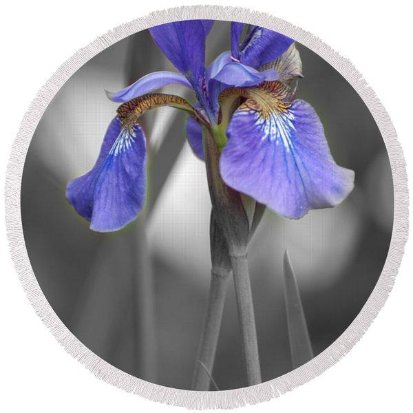 Black And White Purple Iris Round Beach Towel