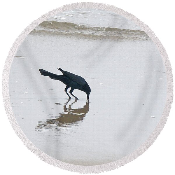 Boat-tailed Grackle - Quiscalus Major - In Surf Round Beach Towel