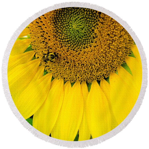 Bumble Bee On Sunflower Round Beach Towel