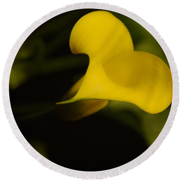 Calla Lily Yellow IIi Round Beach Towel
