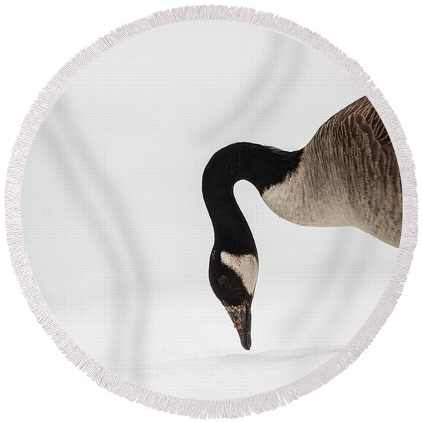 Canada Goose Point Round Beach Towel