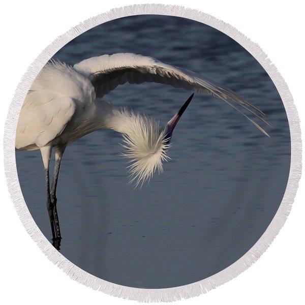 Checking For Leaks - Reddish Egret - White Form Round Beach Towel