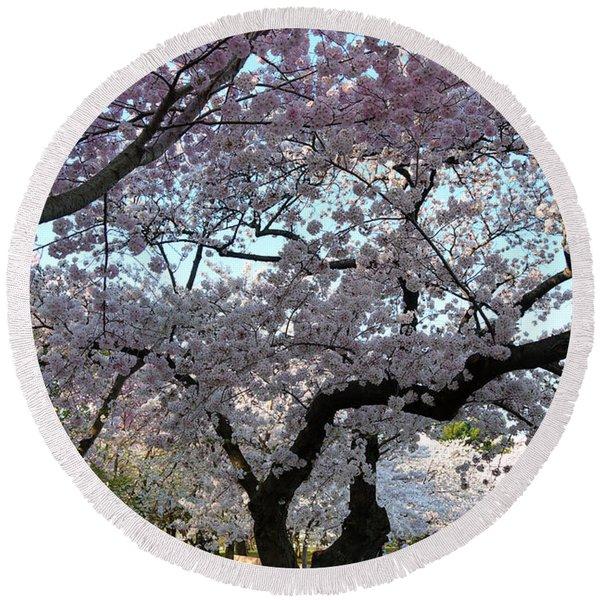 Cherry Blossoms 2013 - 044 Round Beach Towel