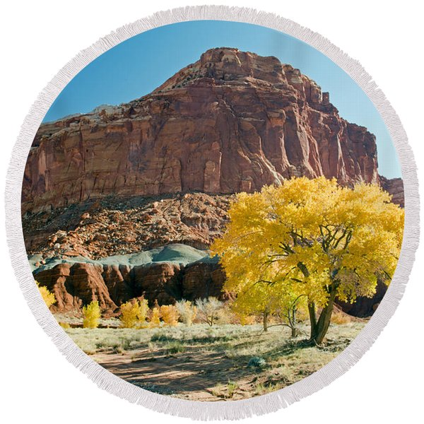 Cottonwoods In Fall The Castlecapitol Reef National Park Round Beach Towel